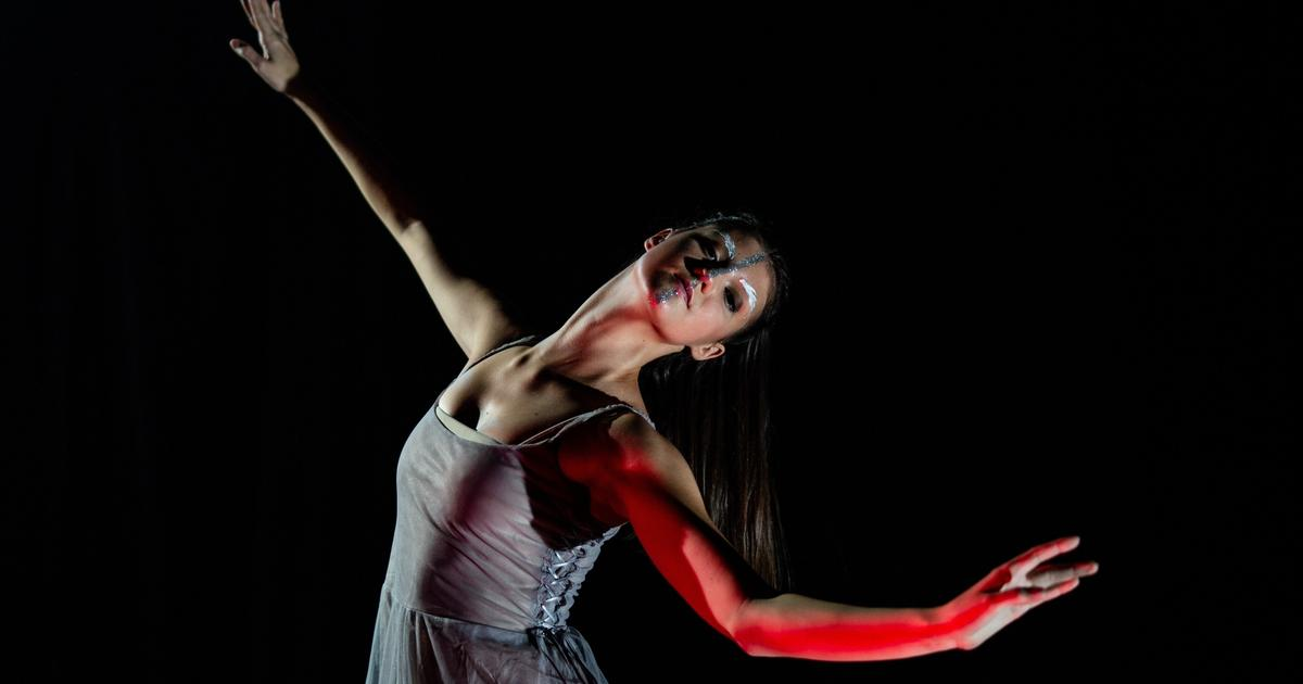 Worldwide Now Casting: Join the Multi-Genre Dance and Acrobatics Show 'Zubrick' + More Gigs
