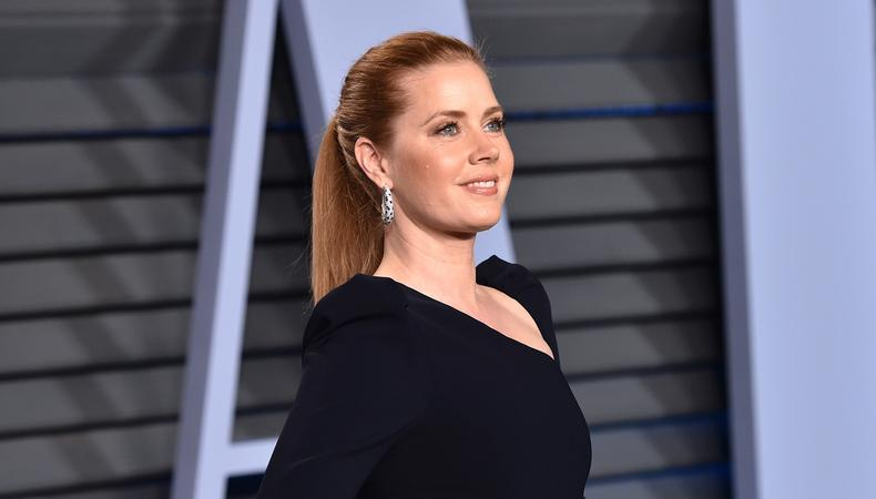 dad0337f0 Greenlit: Ron Howard's Netflix Adaptation of 'Hillbilly Elegy' Starts  Casting, Amy Adams to Star + More to Watch