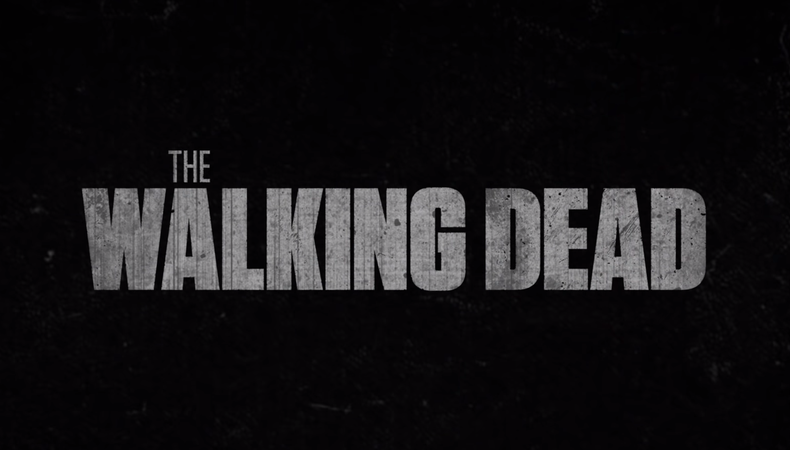 Greenlit: AMC's New 'Walking Dead' Spin-Off Casts Nico