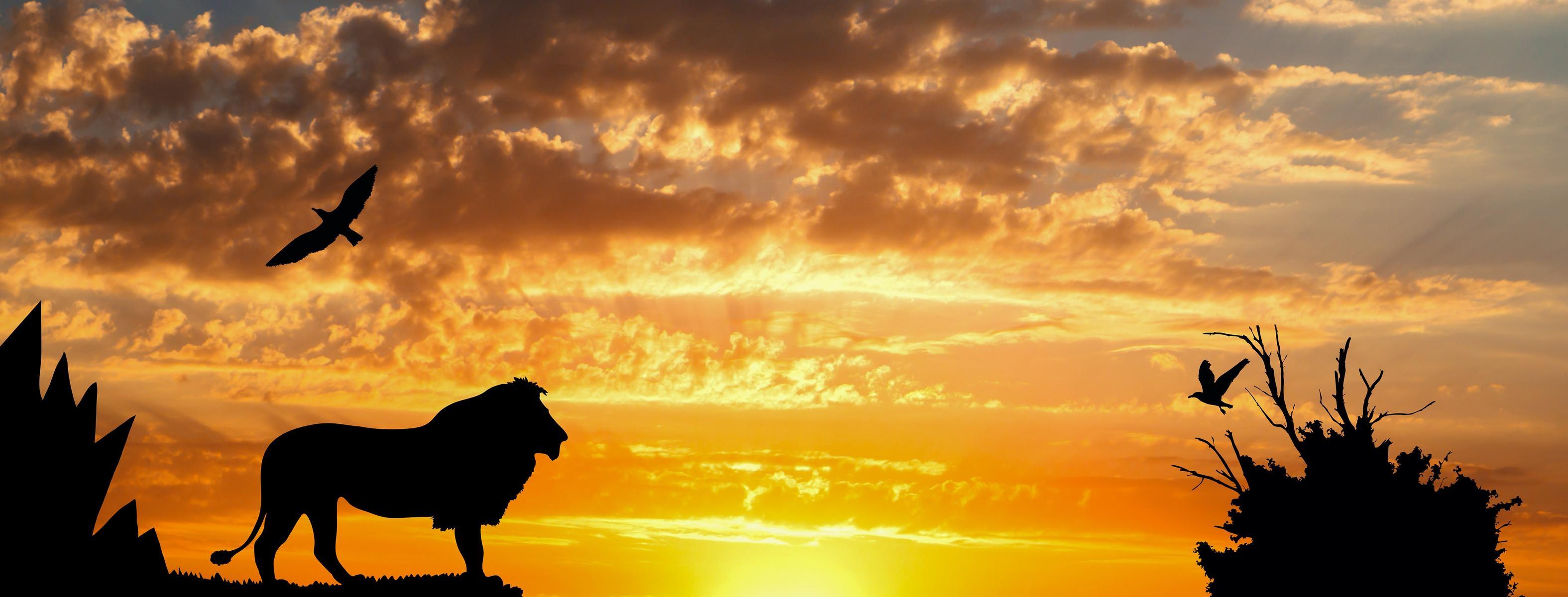 Disney Begins Casting on Live-Action 'Lion King'