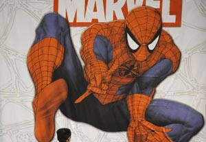 'Spider-Man' on Prowl for New Mary Jane