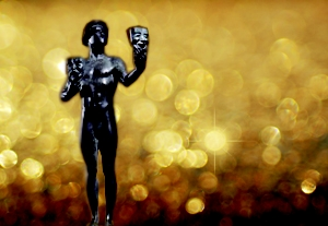 2010 SAG Awards Voters Guide