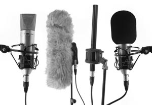 Myths, Mistakes, and Making It in Voiceover