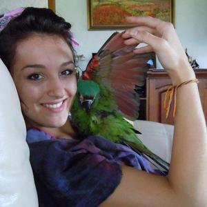 Sarah Villegas - parrot.jpg