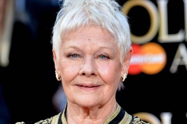 Even Judi Dench Worries About Getting Jobs + More Industry News