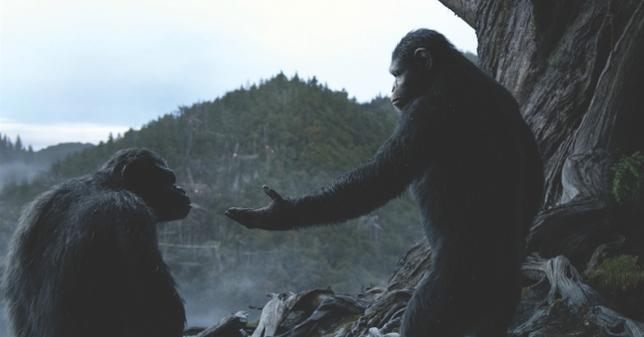 How Debra Zane Cast Actors to Play Apes
