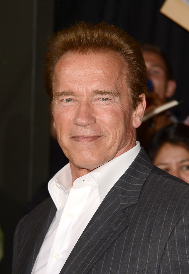 New Movies from Arnold Schwarzenegger, Ice Cube Get Casting