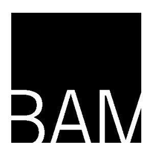 BAM Names New Director of BAMcinématek
