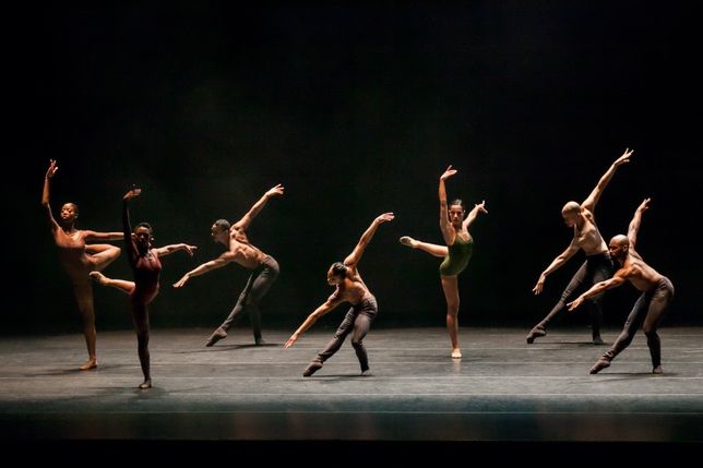 Complexions Contemporary Ballet Deserves Better Choreography