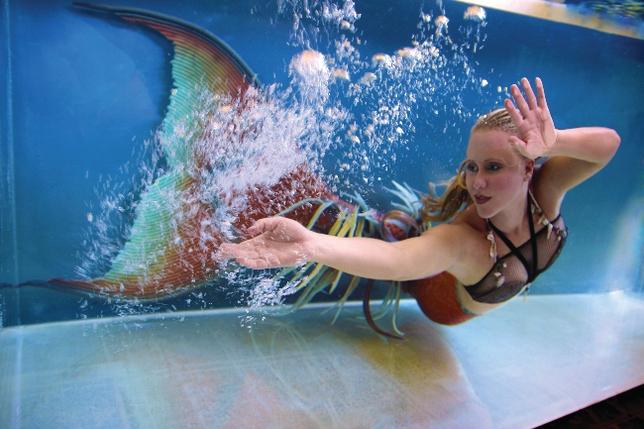 Professional Mermaids Make Quite the Splash (and Cash)