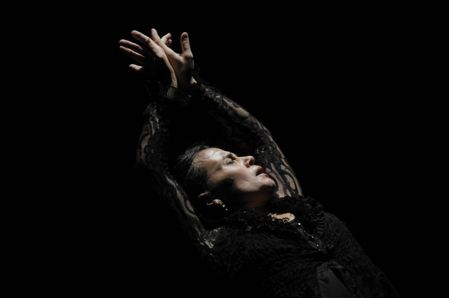 Soledad Barrio and Noche Flamenca Bring the Best of Flamenco to The Joyce