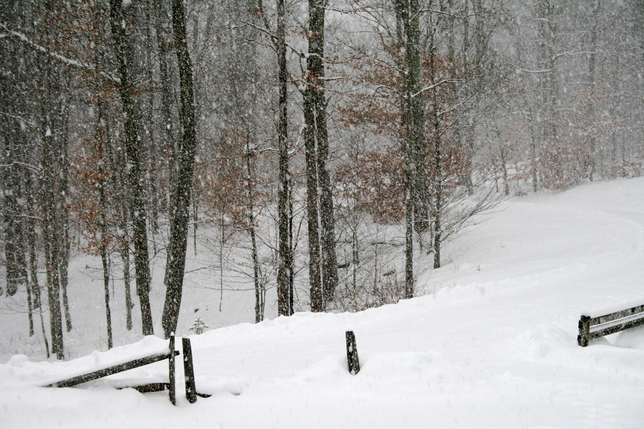 19 Lessons For Self-Reflection on a Snow Day