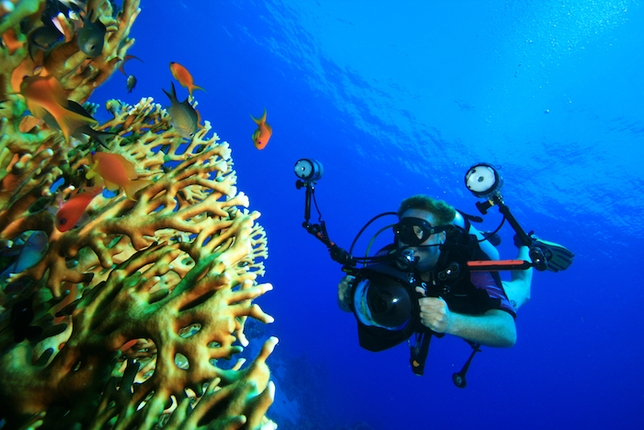Under the Sea: Tips for Shooting in Water