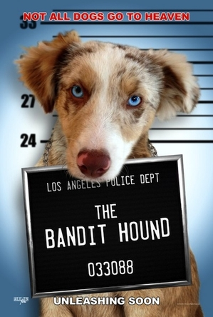 L.A. Now Casting 'The Bandit Hound' and Other Upcoming Auditions
