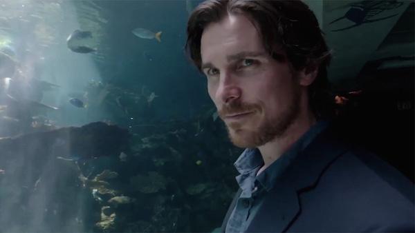 Oscars 2016: 16 Films to Keep an Eye On