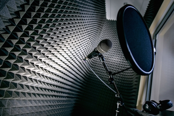 8 Great Teachers to Kick-Start Your Voiceover Career